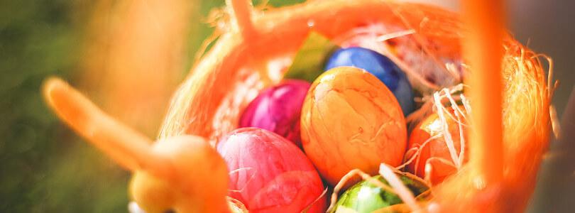 Foto eines orangen Osternestes mit bunten Ostereiern